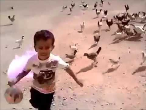 boy fights with hen..