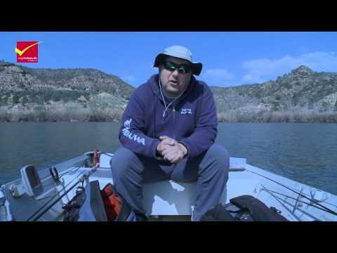 Waller und Zanderfischen Erkundungstour am Rio Ebro in Spanien