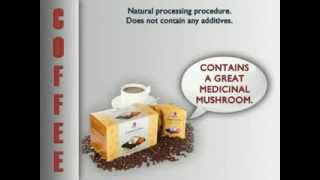 DXN Product and Business Presentation (english)
