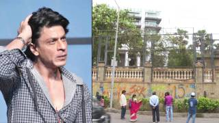 A CRAZY Fan Paints On Shahrukh Khan