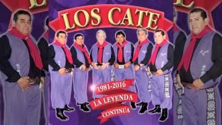 Los Cate 7 - La Danza De Los Mirlos