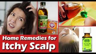 Get Rid Of ITCHY Scalp Fast | How I Cured My EXTREMELY Dry Scalp!