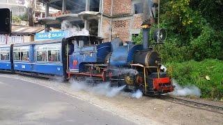 DARJEELING HIMALAYAN Railway on Batasia Loop  || Short Compilation