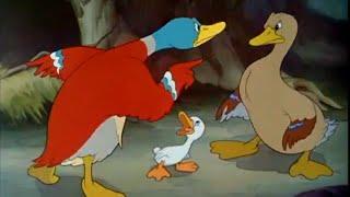 Ugly Duckling -  Walt Disney