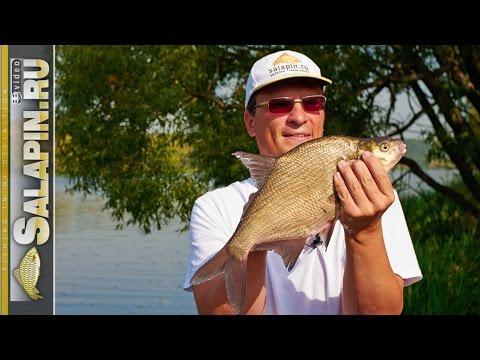 все о рыбалке в сентябре на фидер