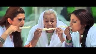 Hum To Bhai Jaise Hain   Veer Zaara   BluRay Full HD 1080p