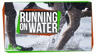 Could You Run on Water?