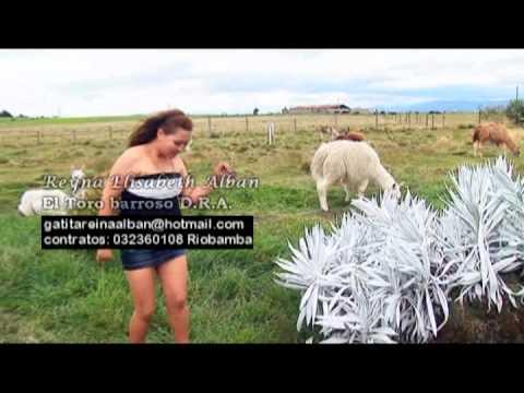 Xxx Mp4 El TORO BARROSO REINA ALBAN 3gp Sex