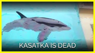 Kasatka Is Dead