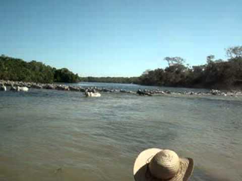 Travessia da Boiada no Rio Cristalino MT