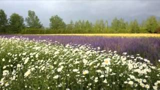 Karanjal Kanneroppum snehamalle Christian song~~ HD~~