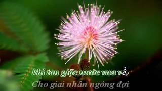 Karaoke Hoa Trinh Nữ St  Trần Thiện Thanh