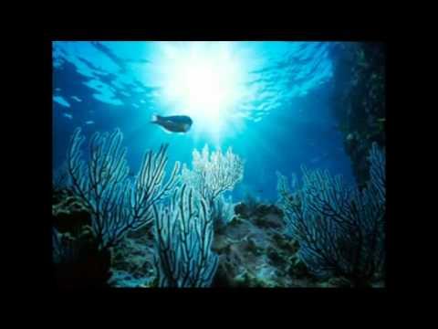 Xxx Mp4 SAMBA PA TI SAX VIDEO CLIP TASTIERA AUDYA 2012 3gp Sex