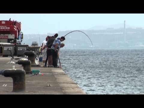 Agustin Pérez 6 9 2011 Gran Pesca del Bonito a caña Muelle Reina Sofia Las Palmas G C