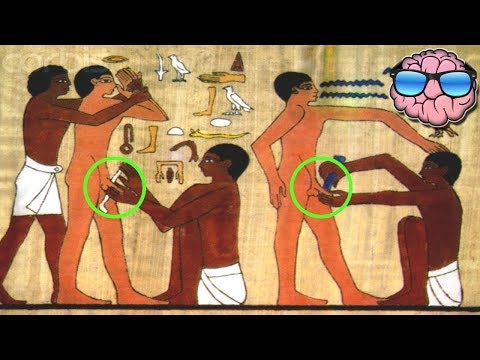 Xxx Mp4 10 AMAZING Facts You Didn 39 T Know About ANCIENT EGYPT 3gp Sex