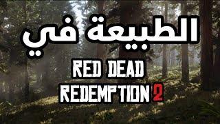 #ريد_كاست : الطبيعه والحيوانات كيف بتكون في Red Dead Redemption 2 🌵🐎 .. !