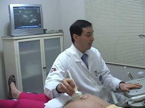 Clínica Dhâranâ Ultra Sonografia Obstétrico