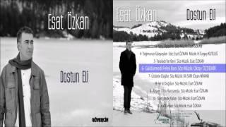 Esat Özkan - Güldürmedi Felek Beni  [2016 Güvercin Müzik Official Audio]