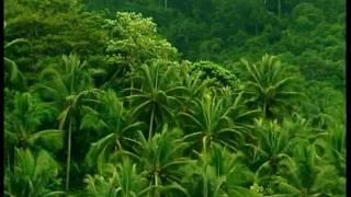 Koh Phangan the spiritual island 2/1 -anzsufilm 2005.m4v
