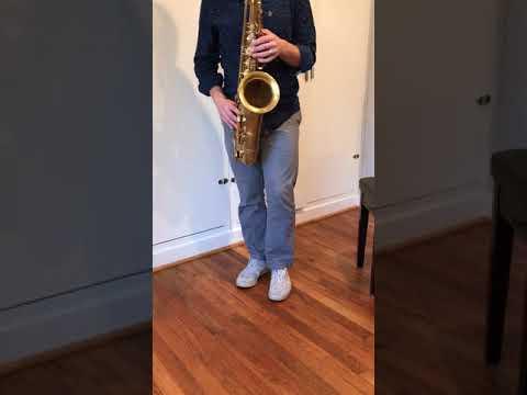Xxx Mp4 149 Xxx Selmer Mark VI Tenor Saxophone Demo DC Sax 3gp Sex