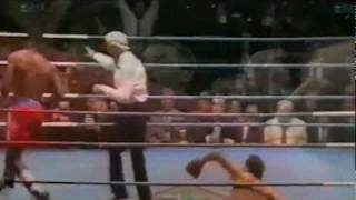 Lennox Lewis Knockouts & Highlights