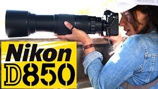 NIkon D850: Best Wildlife Camera EVER?