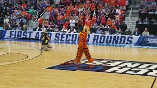 The Tiger defeats Aubie in dance off