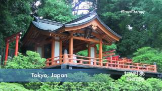 Top 10 Reasons to Visit Tokyo | TRAVEL THERAPY