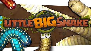"🐍 The Little MMO That Could | ""Little Big Snake"""