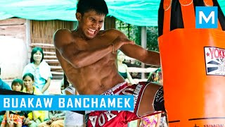 Buakaw Banchamek Hardcore Muay Thai Training   Muscle Madness