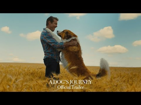 Xxx Mp4 A Dog 39 S Journey Official Trailer HD 3gp Sex