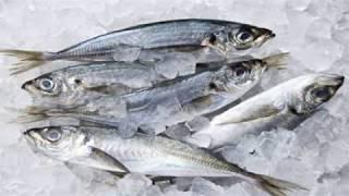 تحذير من حفظ الاسماك فى الفريزر لهذه الاسباب الخطيرة جدا على صحتك