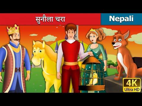 Xxx Mp4 सुनौला चरा The Golden Bird Story In Nepali Nepali Story Story In Nepali Nepali Fairy Tales 3gp Sex