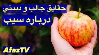 حقایقی جالب درباره سیب که حتما نمیدونستید