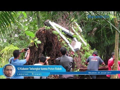 12 Kuburan Terbongkar karena Pohon Tumbang