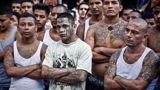 Gangs des favelas Traffic, Drogue, Braquage Reportage Complet