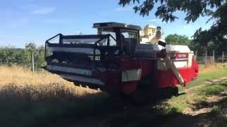 Yanmar CA750 kombájn próba aratás / harvest test