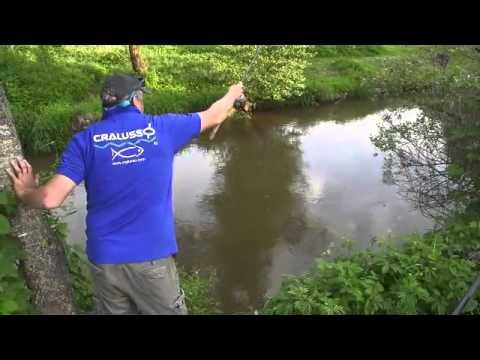 ловля карася на поплавок в болоте