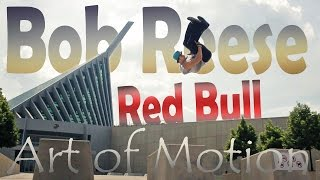 Bob Reese - Red Bull Art of Motion Submission 2016