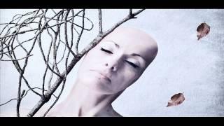Arro - The Fall HD (eTernalmusicradio rework)