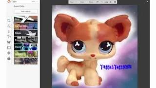 How to Make a LPS Profile Picture
