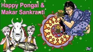 Happy Pongal & Makar Sankranti