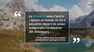 L'evoluzione dei dinosauri si studia sulle Dolomiti