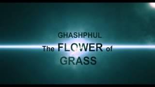 Ghashphul - The Flower of Grass - ঘাসফুল (first look) 2015 Bangla movie trailer