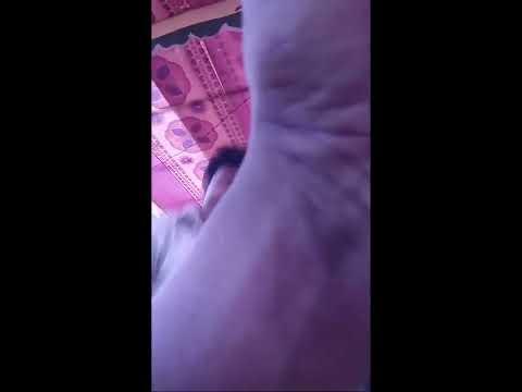 Xxx Mp4 Hot Bicitra Dance Hot Jatra Dance 3gp Sex