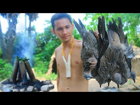 Xxx Mp4 Primitive Technology With Survival Skills Hunting Birds Dove Cooking For Food 3gp Sex