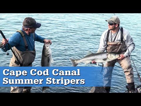 Cape Cod Canal Stripers Full Episode