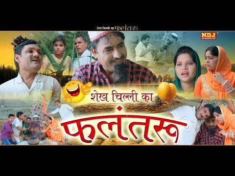 Xxx Mp4 शेख चिल्ली का फलंतरू Shekh Chilli Bana Tantrik शेख चिल्ली की सबसे हिट कॉमेडी HariramTufan NDJ 3gp Sex