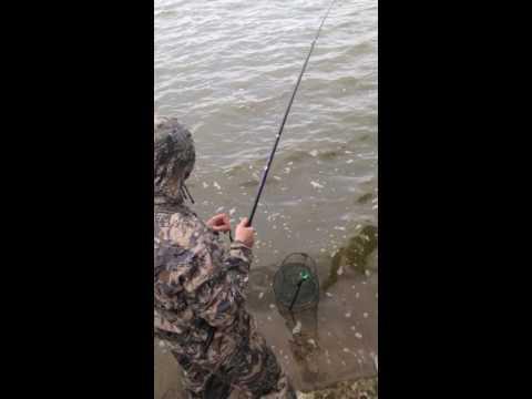 рыбалка егорьевск карп