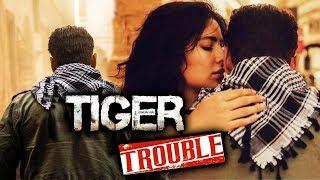 Salman's Tiger Zinda Hai In Trouble, Stuntman Goes On Strike?